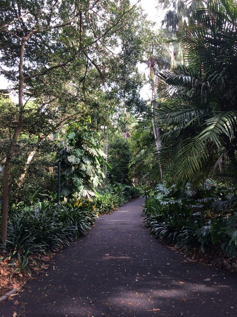 The Royal Botanical Gardens Sydney