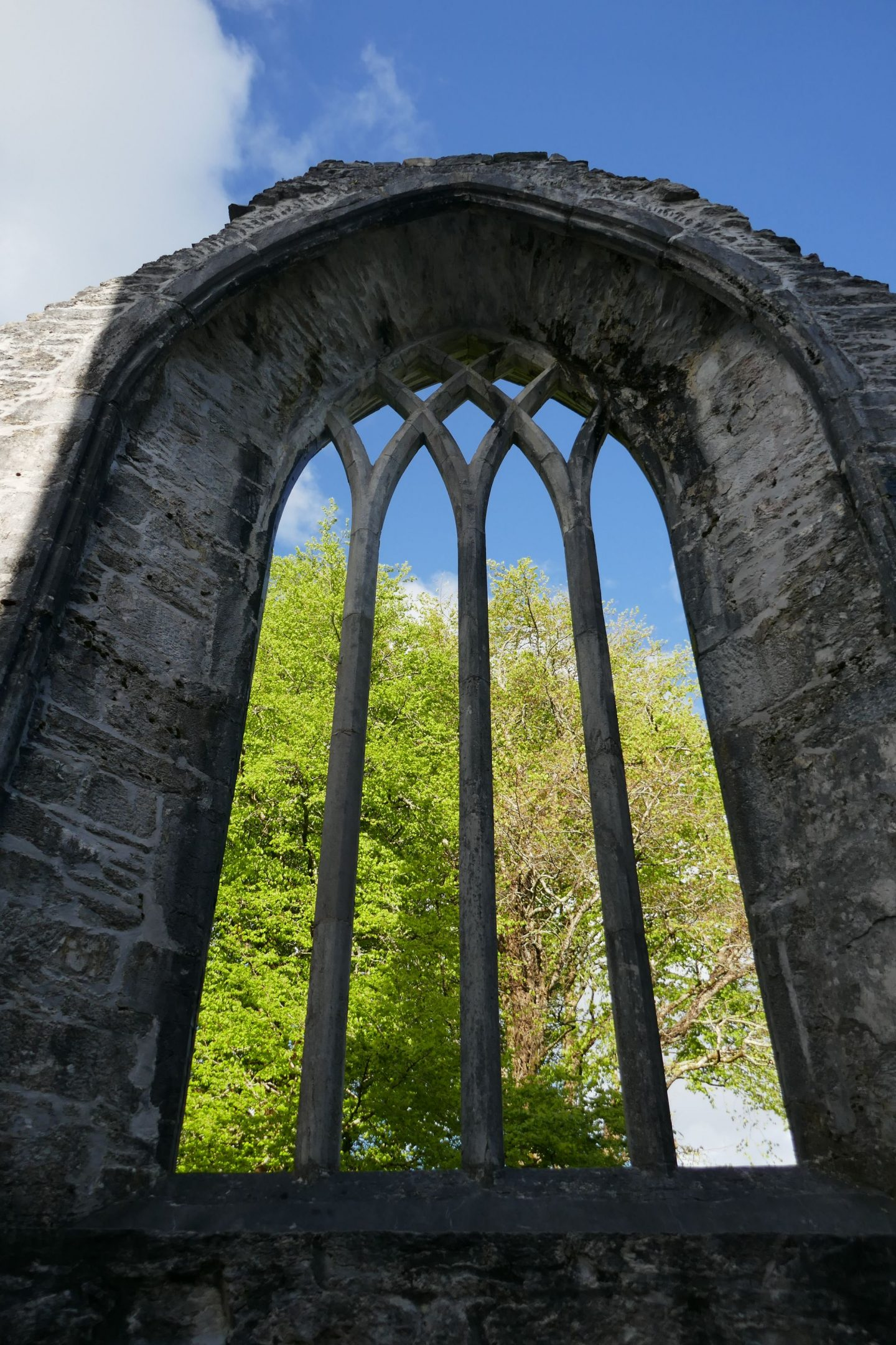 Looking out at window ruin Muckross Abbe, Killarney