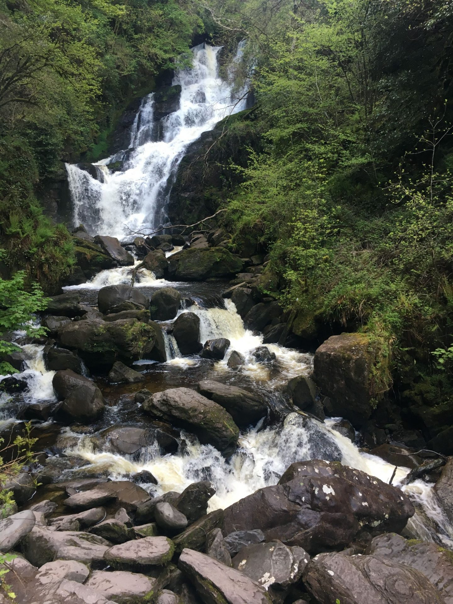 Torc Waterfall,Killarney