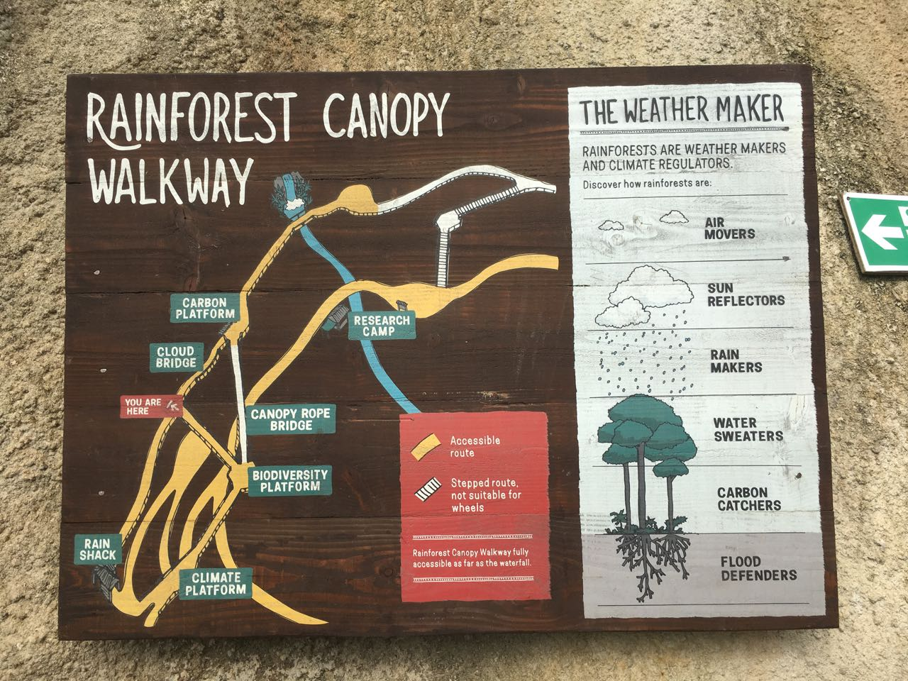 Map of the rainforest canopy walkway explaining why rainforest are so important