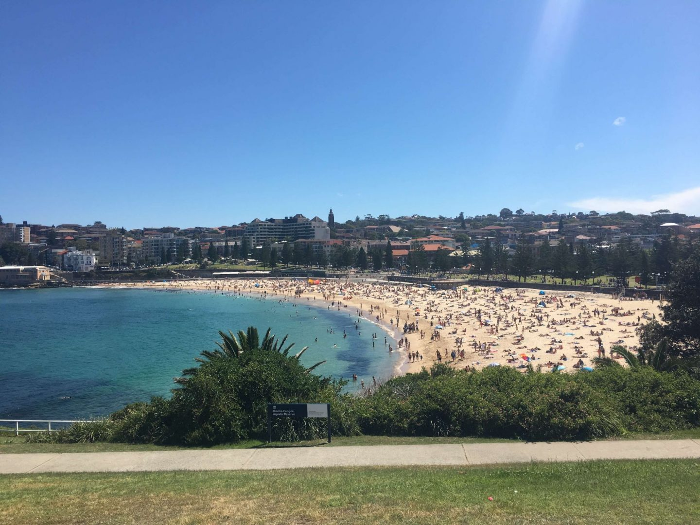 Overview of Coogee Beach