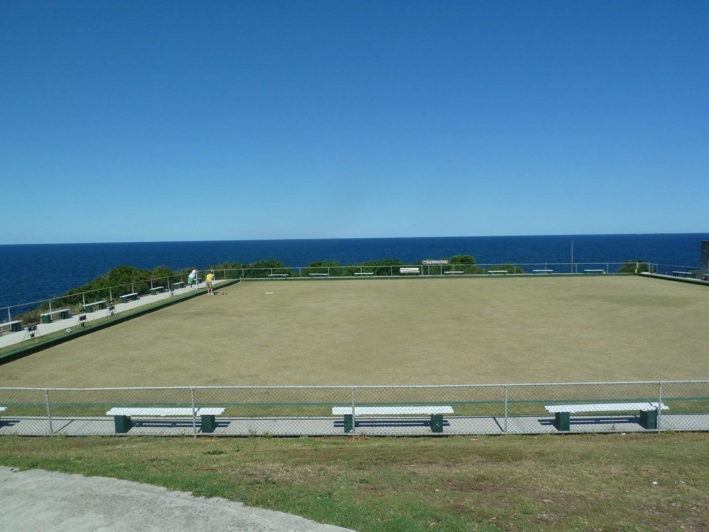 Looking over the bowling green at the Clovelly Lawn Bowls Club