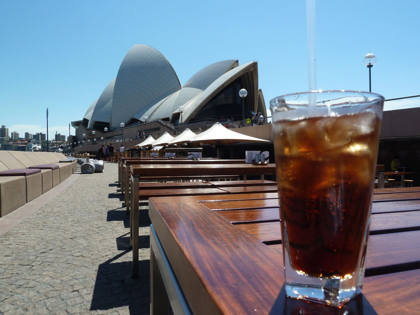 A drink at the Opera Bar at the Sydney Opera House