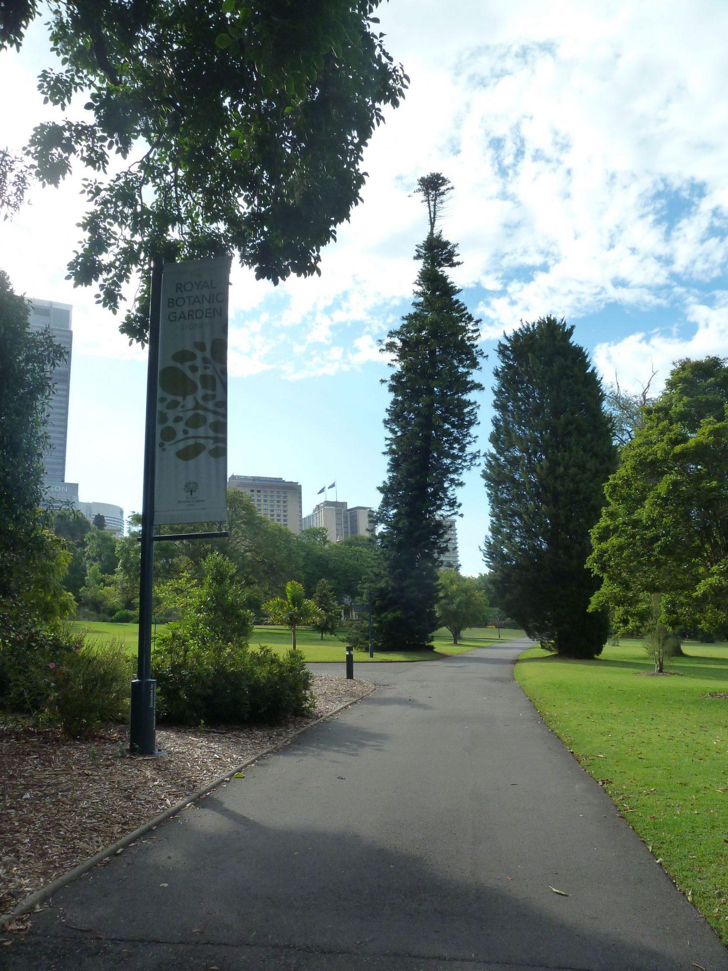 Pathway in the Royal Botanic Gardens Sydney