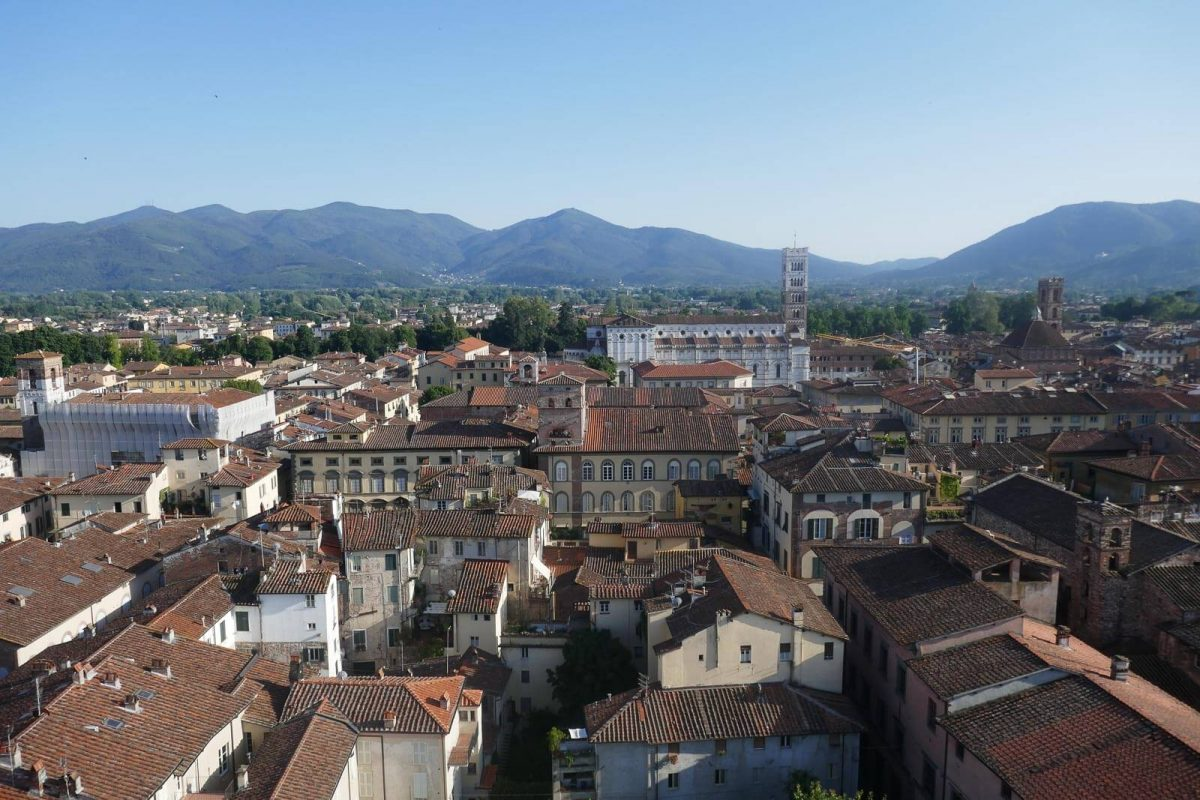 View of Lucca rooftops and mountains from the Torre Guinigi