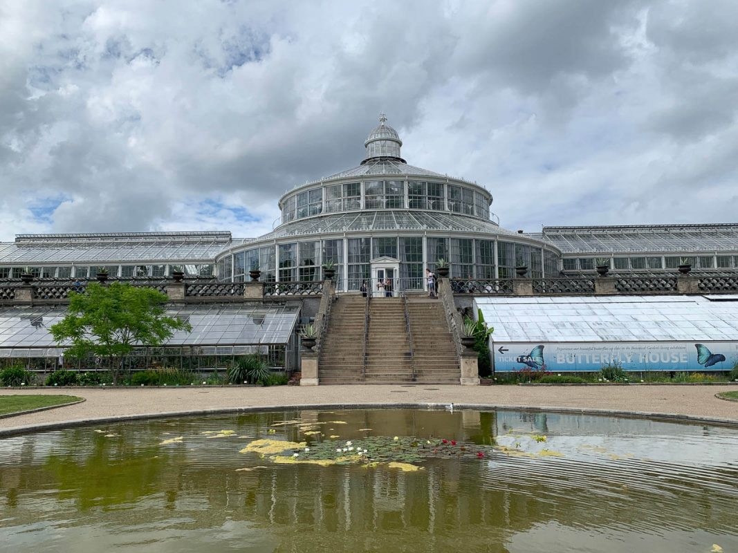Glasshouses in the Botanical Gardens